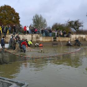 Pêche RNR Etangs de Belval-en-Argonne